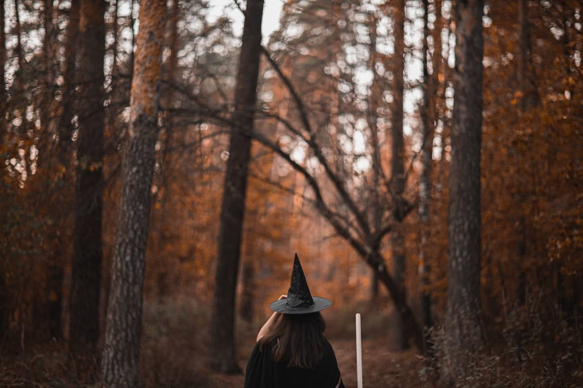 Witch in the Woods - Plantation Shutters Ltd.jpg